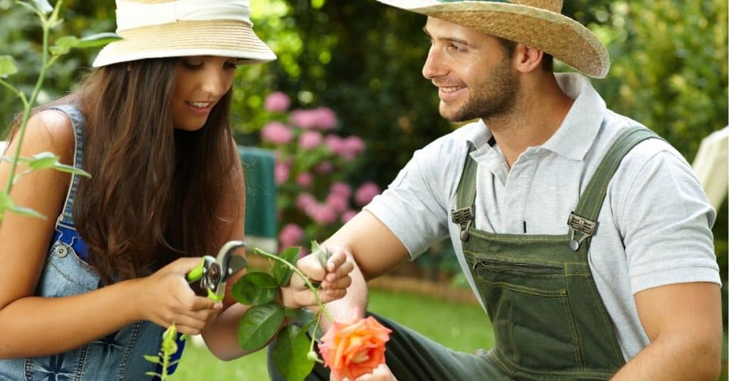 Couple gardening together