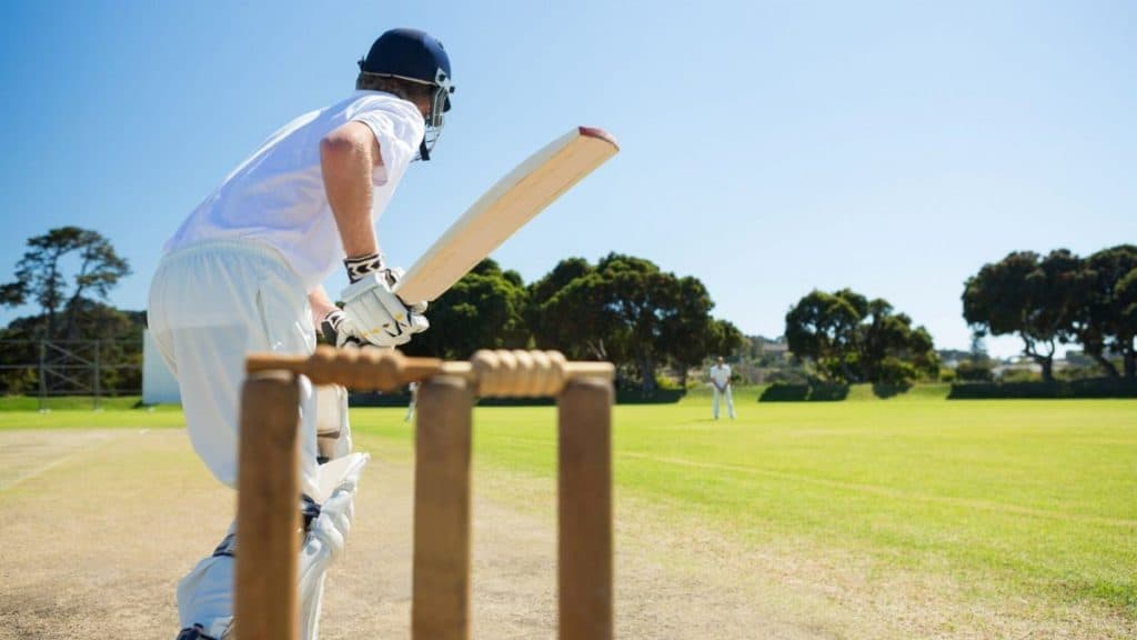 A cricket player going in for bat.
