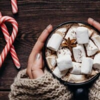 Woman's hands cradling a cup of hot chocolate with candy canes in the background.